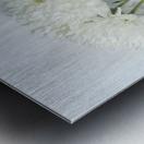 Mum Flower in a Vase Metal print