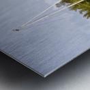 On Quiet Waters Metal print