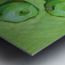 Green Apples Metal print