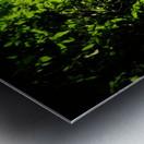 sofn-12072B59 Metal print