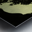 sofn-2B688FDF Metal print