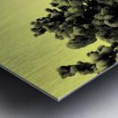 D (10) Metal print