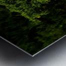 sofn-30401FB1 Metal print