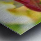 Garden Flowers Art Photograph Metal print