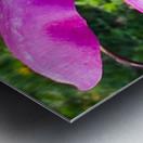 Peaceful pink  Impression metal