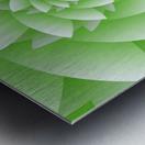 Greeny Floral Metal print