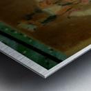 Untitled 8_copy Metal print