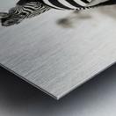 DUO Metal print