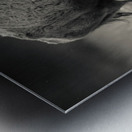 Bison love Metal print