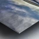 ford mustang  Metal print