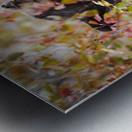 _T8C8285 Modifier 2 Metal print