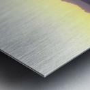 100_1064 Metal print