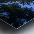 Weyerhaeuser Tree Metal print