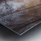 Mistyc mist Metal print