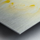 The White Rose Metal print