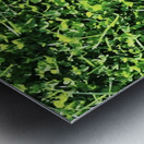 Grassy Wonderland Metal print