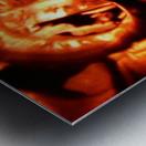 1542082660317 Metal print