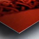 1542090543100 Metal print