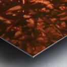 1542380994615_1542384421.82 Metal print