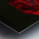 Red of the red Metal print