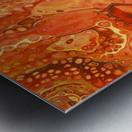 Kalahari Desert Metal print