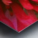 Red blossom  Impression metal