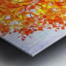 Heavenly birches Metal print