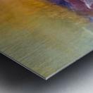 1F85985B CE79 4104 B69F 1FF87309E102 Metal print