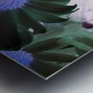 Purple44flow  Impression metal