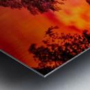 _IBC3569 Metal print
