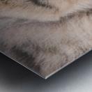 March Cat Metal print