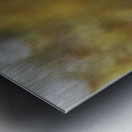 DSC_0026 Metal print