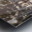 In the field Metal print