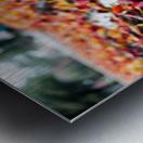 The Colors of Fall Metal print