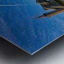 Fox on the roof Metal print
