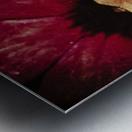 Red Impression metal