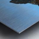 The Cobler  Metal print