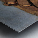 The source by Albin Egger-Lienz Metal print