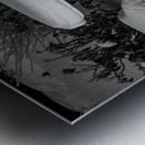 Easy To Estimate Snow Depth BW Metal print