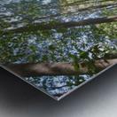 Landscape (249) Metal print