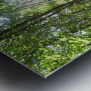 Landscape (176) Metal print