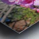 Flower (111) Metal print