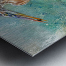 Fishing With Big Blue Metal print