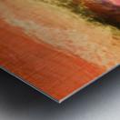 C995A81E 0B38 44EA 9855 B0E77A60B600 Metal print