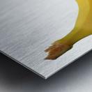Genetically Modified Metal print