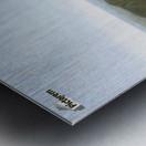 Cader Idris Metal print