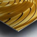 Goldie X v2.0 Metal print
