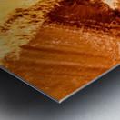 B9EF692F 48F0 4FA0 A267 6C75F478E0CC Metal print