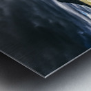_LAB5652ss Metal print