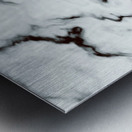True White Marble - panoramic abstract wall art Metal print